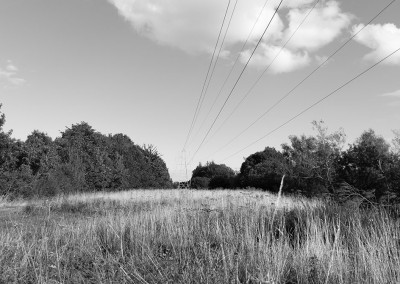 Pylons on a walk by the by River Exe