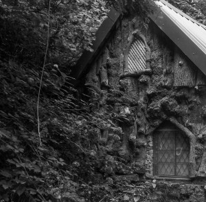 A strange house in the Wildwood