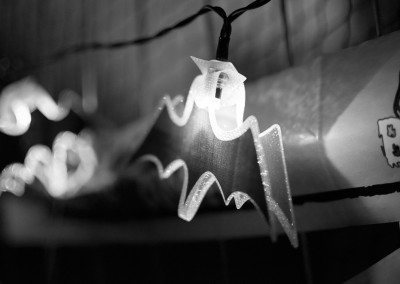 Halloween bat fairylight at Party