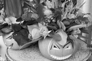 Pumpkins and floral display outside shop on Gloucester Road