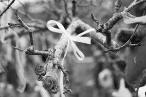 Wassail tree branch with ribbon