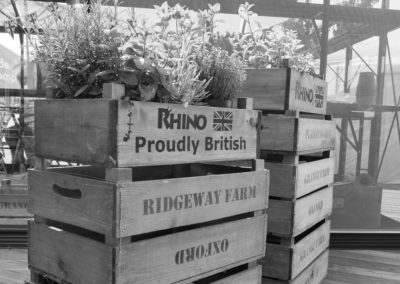 Herb plants on a stack of wooden crates at the Malvern Show 2016