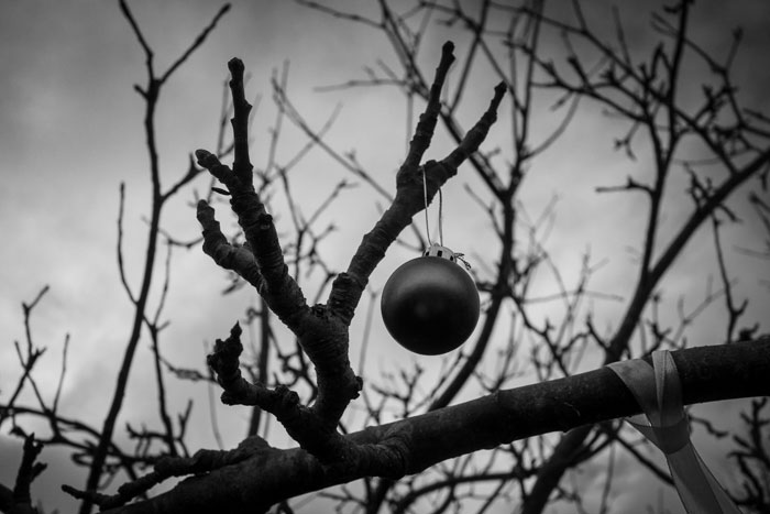 Bauble decoration on the Wassail tree - 2019