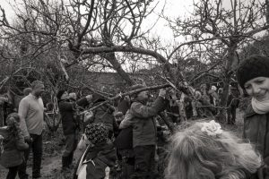 Ribbons being tied on the Wassail tree - 2019